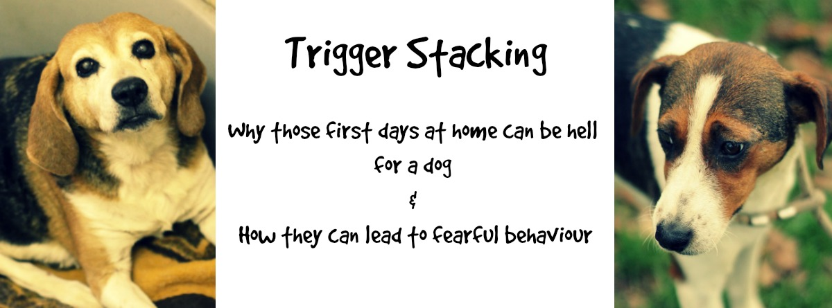 FBpage trigger stacking